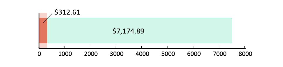تم صرف 312.61  دولار أمريكي; تبقّى 7,174.89 دولار أمريكي