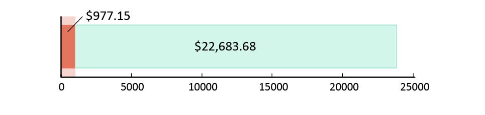 تم صرف 977.15 دولار أمريكي; تبقّى 22,683.68 دولار أمريكي
