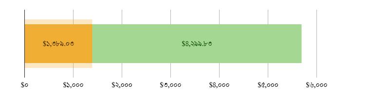 মার্কিন$১,৩৮৯.০৩ খরচ হয়েছে; মার্কিন$৪,২৯৯.৮৩ হাতে রয়েছে