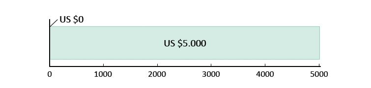 US $0,- uitgegeven; US $5.000,- resterend