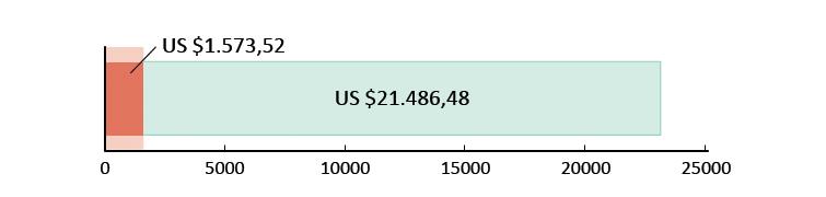 US $1.573,52 uitgegeven; US $21.486,46 resterend