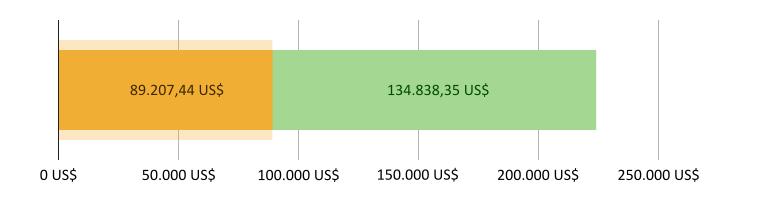 89.207,44 US$ ausgegeben, 134.838,35 US$ übrig