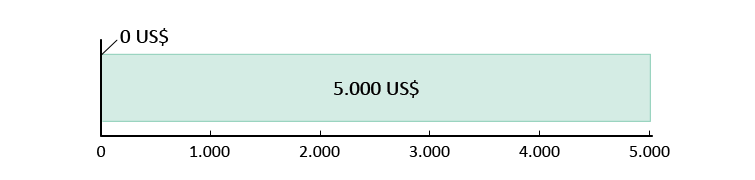 0 US$ ausgegeben; 5.000 US$ übrig