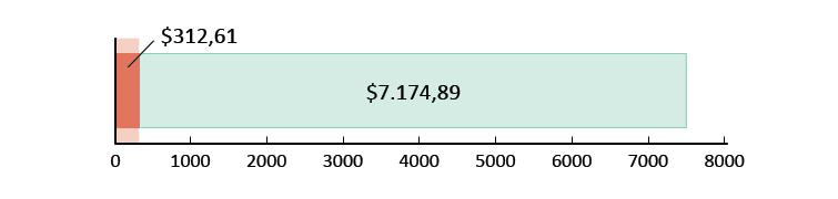 Ξοδεύτηκαν $312,61 και απομένουν $7.174,89
