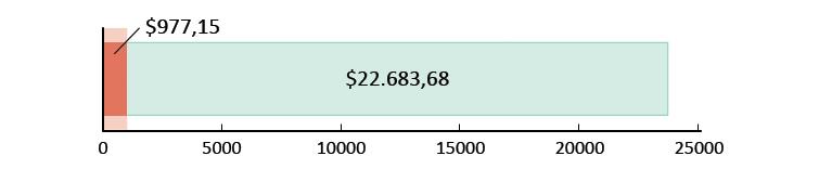 Ξοδεύτηκαν $977,15 και απομένουν $22.683,68