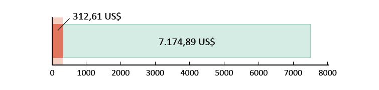 312,61 US$ spesi; 7.174,89 US$ rimanenti