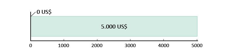 0 US$ spesi; 5.000 US$ rimanenti