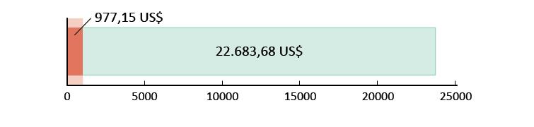 977,15 US$ spesi; 22.683,68 US$ rimanenti