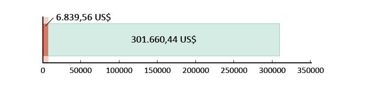 6.839,56 US$ donati; 301.660,44 US$ rimanenti