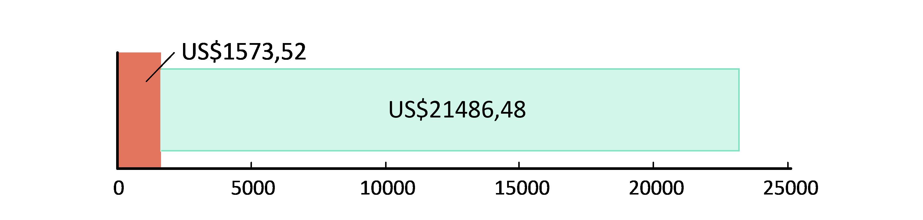 US$ 1,573.52 cheltuiți; US$21,486.48 rămași