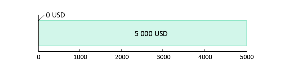 потрачено 0 USD; остаток 5,000 USD