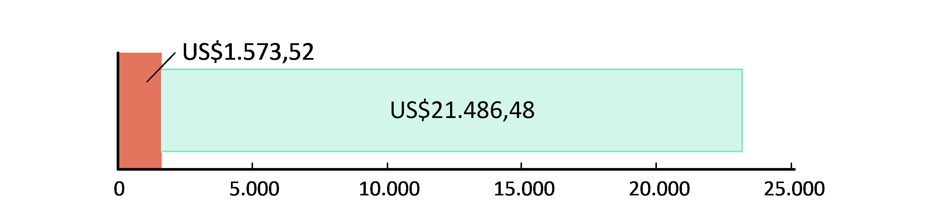 US$ 1.573,52 fueron usados; US$21.486,48 restan