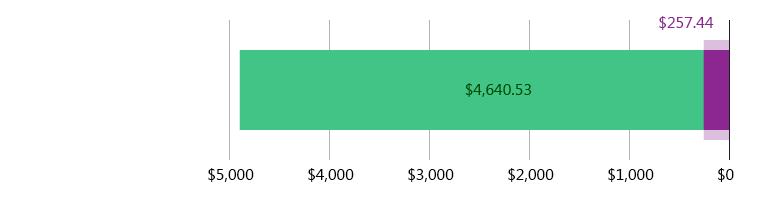صُرِفَ 257.44 دولار أمريكي; وتَبَقّى 4,640.53 دولار أمريكي