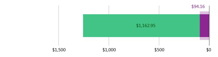 صُرِفَ 94.16 دولار أمريكي; وتَبَقّى 1,162.95 دولار أمريكي