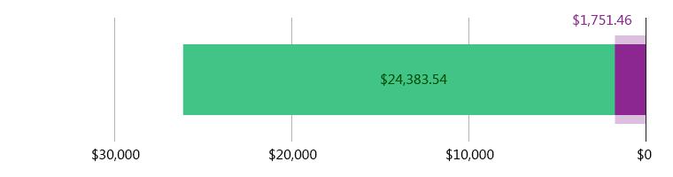 صُرِفَ 1,751.46 دولار أمريكي; وتَبَقّى 24,383.54 دولار أمريكي