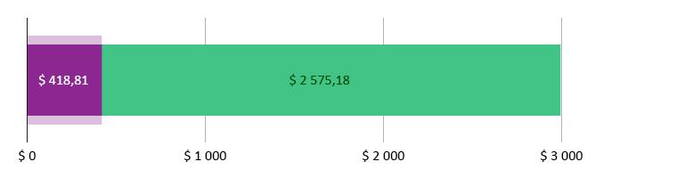 $ 418,81 brukt; $ 2 575,18 gjenstår