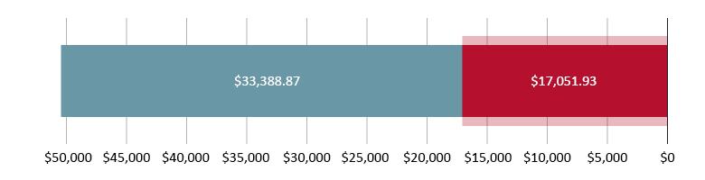 تم صرف 17,051.93 دولار أمريكي؛ تبقّى 33,388.97 دولار أمريكي