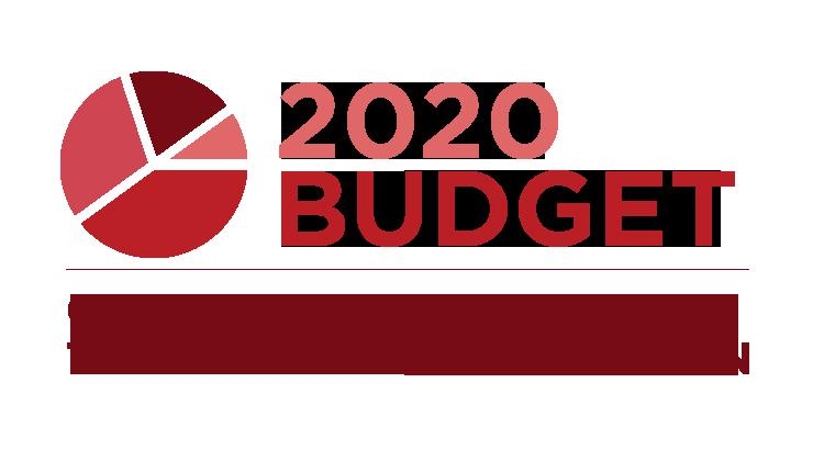 Organisatie voor Transformatieve Werken: budget 2020