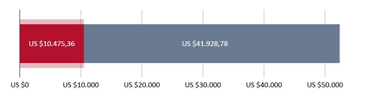 US$ 10.475,36 uitgegeven; US$ 41.928,78 resterend