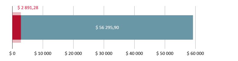 $ 2 891,28 brukt; $ 56 295,90 gjenstår