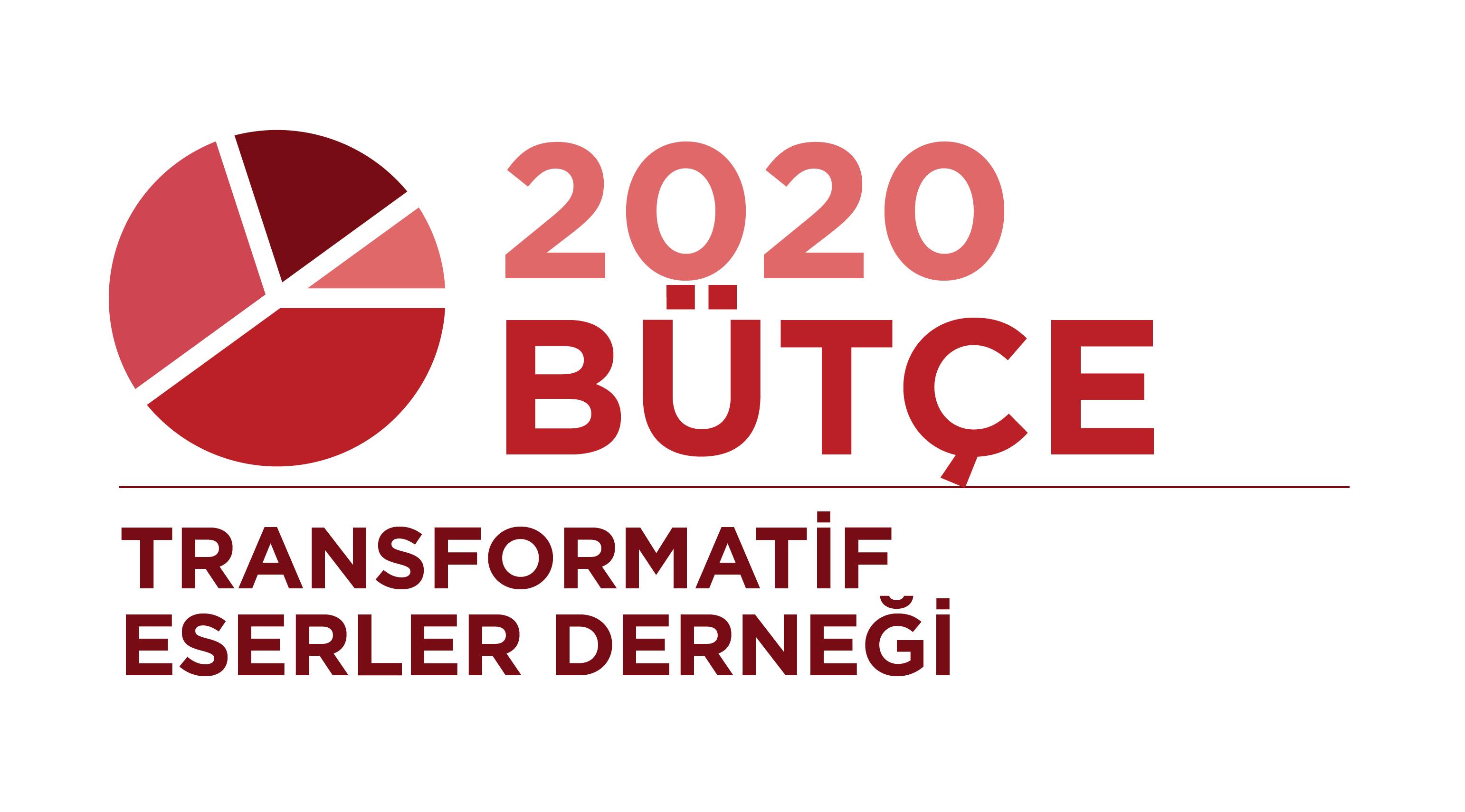 Transformatif Eserler Derneği: 2020 Bütçe Güncellemesi