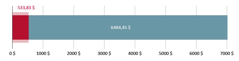 Витрачено 533,83 $; залишилось 6484,45 $