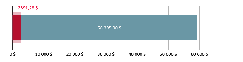 Витрачено 2891,28 $; залишилось 56 295,90 $