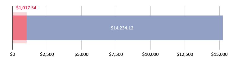 صُرِفَ 1,017.54 دولار أمريكي؛ وتَبَقّى 14,234.12 دولار أمريكي
