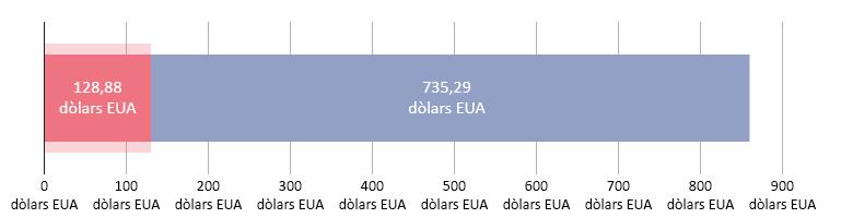 128,88 dòlars EUA gastats; 735,29 restants