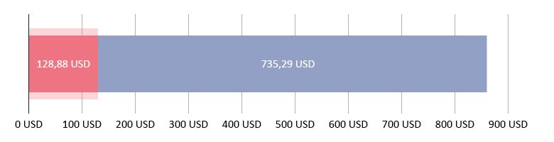 Käytetty 128,88 USD; jäljellä 735,29 USD