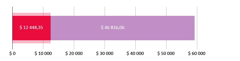 12448,35 доллар сарпталды; 46816,06 доллар калды