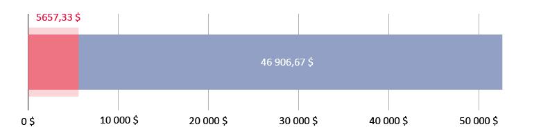 Витрачено 5657,33 $; залишилось 46 906,67 $